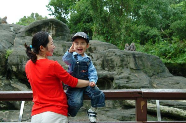 猴子。2007.10.14