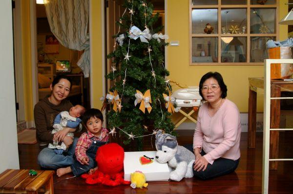詹老師送我們的耶誕樹,很漂亮喔。2007.12.22